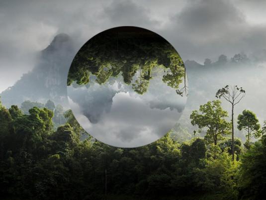 France tv nature, une voix pour l'environnement